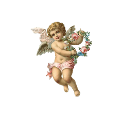 angel cupid angelcore freetoedit