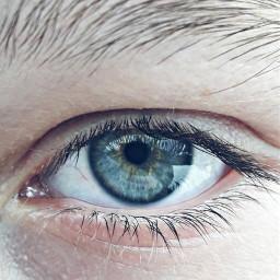 freetoedit eye blue eyebrows oceaneyes