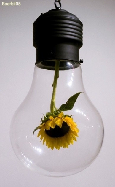 #freetoedit #lightbulb #sunflower #doubleexposure #photography