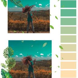 ecpaletteshow paletteshow freetoedit pallette naturephotography