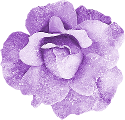 freetoedit flowers frosty shiny beauty