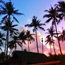 myphoto sunrise giliair lombok indonesia pcpalmtrees