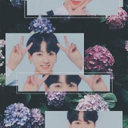 jungkook jeonjungkook wallpaper btswallpaper bts