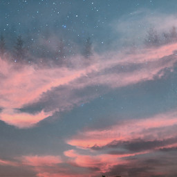 freetoedit dreamscape trees clouds pinkclouds