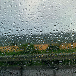 roadtrips farm raining
