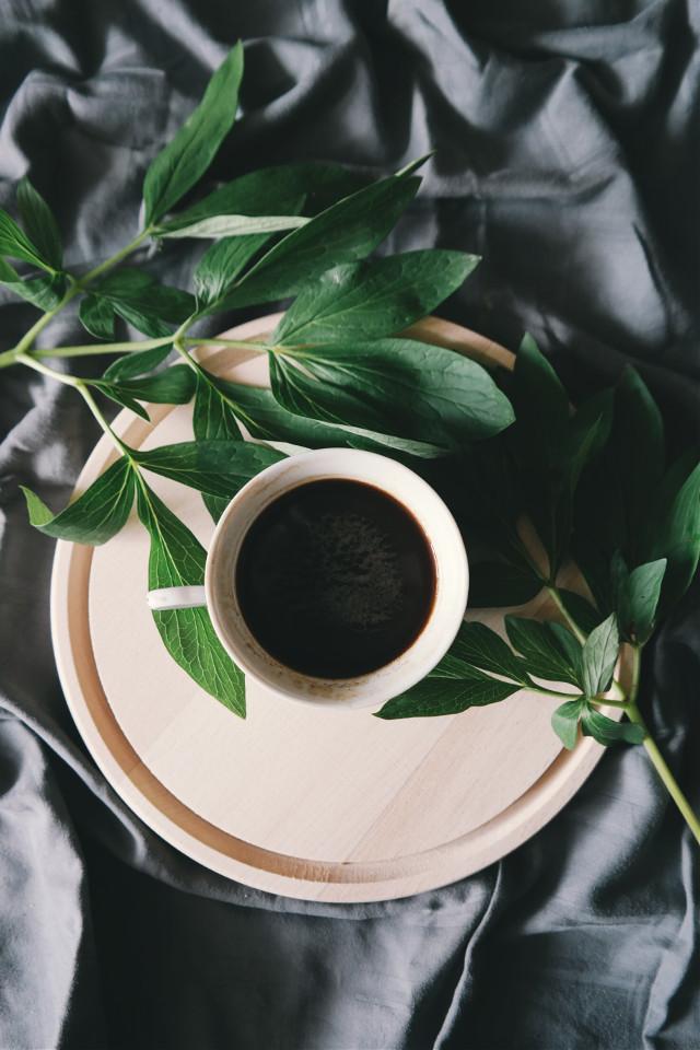 Make something sweet! Unsplash (Public Domain) #coffee #drink #flatlay #aesthetic #plant #freetoedit