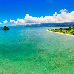 hawaii honolulu oahu naturephotography nature freetoedit