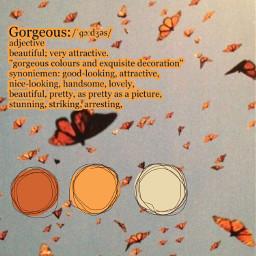 freetoedit butterflies orange sky vintage
