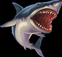 shark freetoedit scsharksticker sharksticker