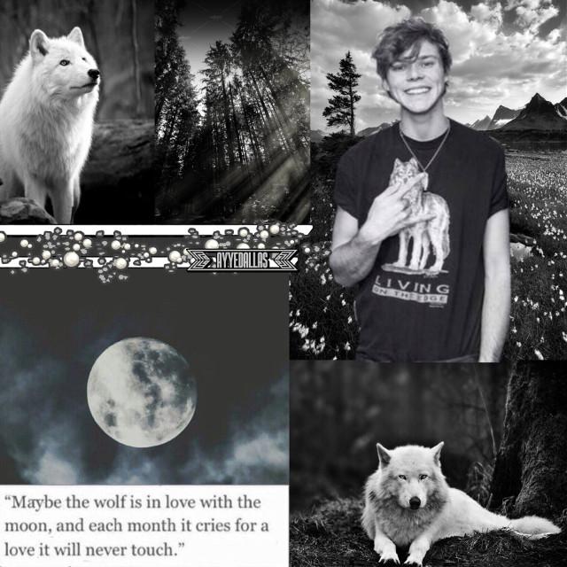 ₊✩🐺✩₊  Not sure how I feel about this. I like the concept, but the edit itself is pretty meh in my opinion.  #5sos #ashton5sos #ashtonirwin #5sosashton #wolf #werewolf #5secondsofsummer #fanedit #gray #white #black #forest #blackandwhite #wolf #grayaesthetic #blackandwhiteaesthetic #wolves #werewolves #fanedit #5sosedit #5sosfam #collage #moon #fullmoon #fanedit #alphawolf #graywolf #whitewolf #aesthetic