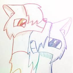 handdrawn handdrawing coloredpencil coloredpencilart wolf freetoedit