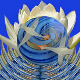 freetoedit lotus purity crane swirls