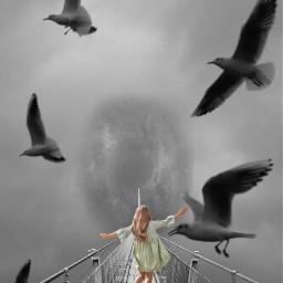 freetoedit seagull hole girl bridge
