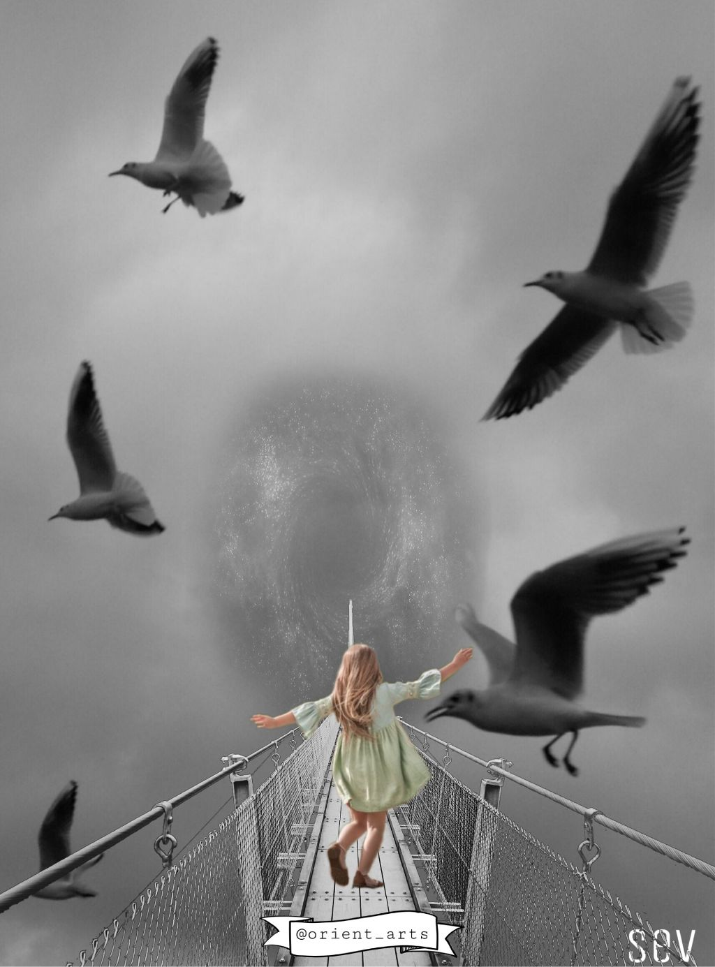 #freetoedit #seagull #hole #girl #bridge #blackandwhite #vipshoutout #imagination #fantasy #picsart @picsart