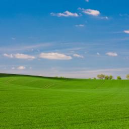 nature grass green background backgounds freetoedit