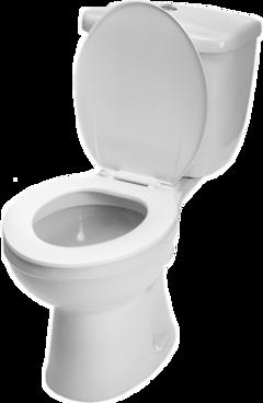 toilet wc bathroom freetoedit
