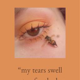 quote bees honey honeybee makeup freetoedit
