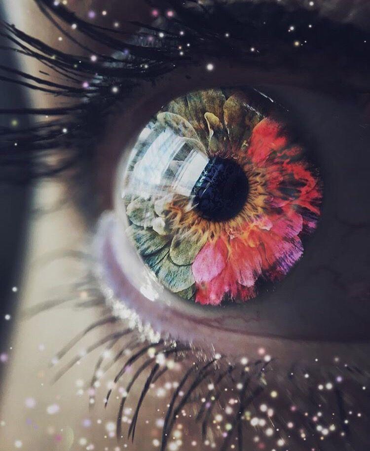 Flower eye 🌺 eye flowers flower eyes surreal portrait