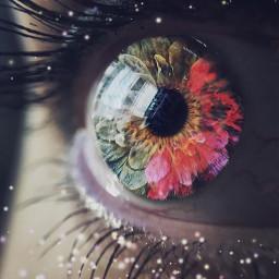 eye flowers flower eyes surreal freetoedit