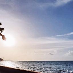 beach sunset freetoedit