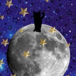 freetoedit blackcat cat black galaxy