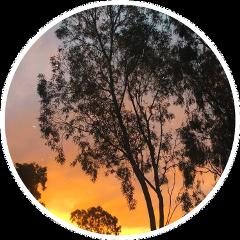 aus australia aussie sunset freetoedit