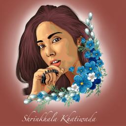 shrinkhala khatiwada picsart pictureinpicture arts