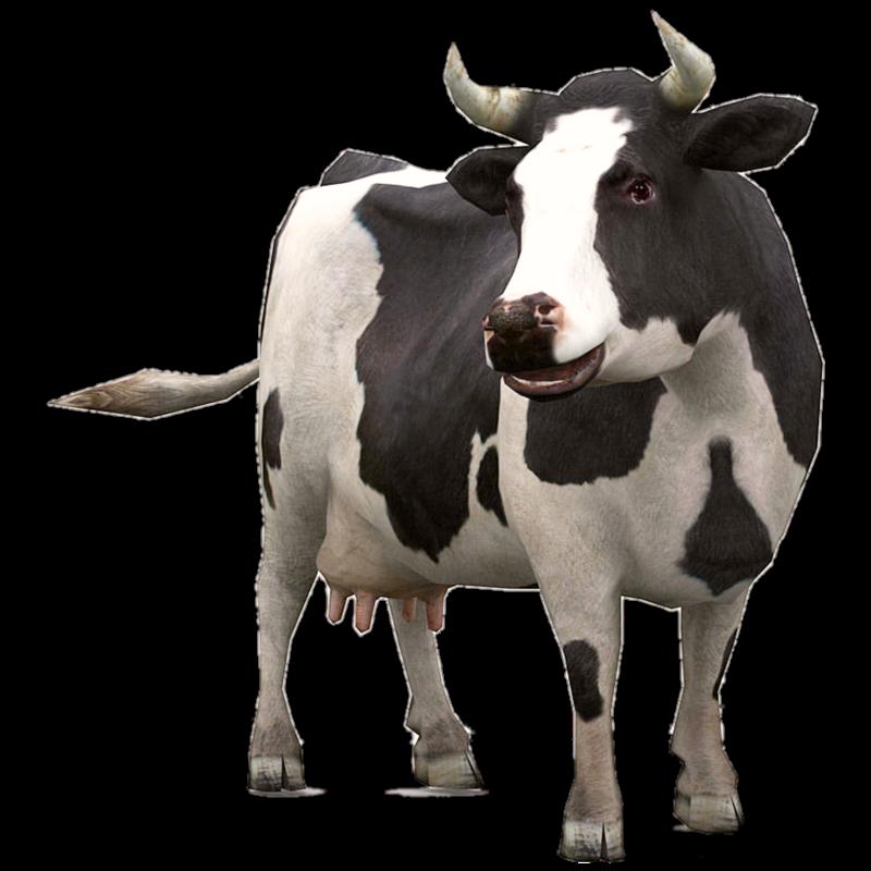 #cow #milk #animals #animal #ftestickers