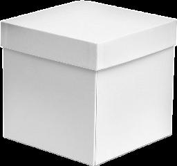 box gift present white giftbox freetoedit