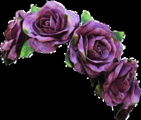 flower flowers crown crowns flowercrown freetoedit