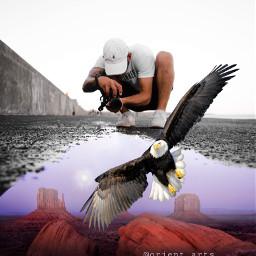 freetoedit photographer surreal water eagle