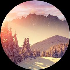 лес forest зима круг фон freetoedit