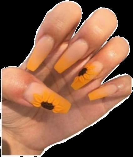 #nails #acrylic #acrylicnails #aesthetic #nailpolish