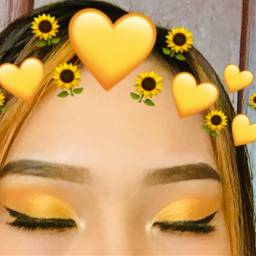 freetoedit crownflower makeupartist