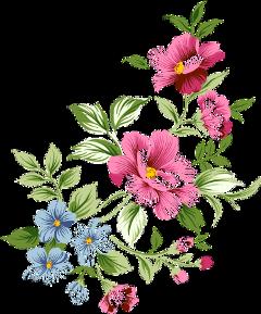 flowers flowerssticker overlays aestetic freetoedit