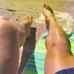 piscineo freetoedit