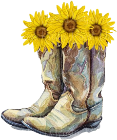 sccowboyboots cowboyboots cowboy cute vote freetoedit