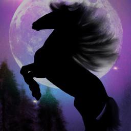 art artist illustrator horse moon