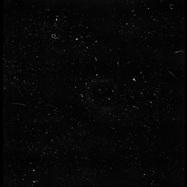 #grain #grainy #filter #polaroid #polaroidphoto #grainyfilm #filmeffect #filmphotography #filmburneffect #freetoedit