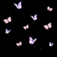 freetoedit aeshetic aesthetics aestheticedit butterfly