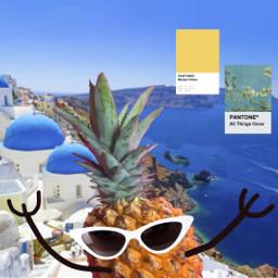 freetoedit pinneapple sun blue sunglasses