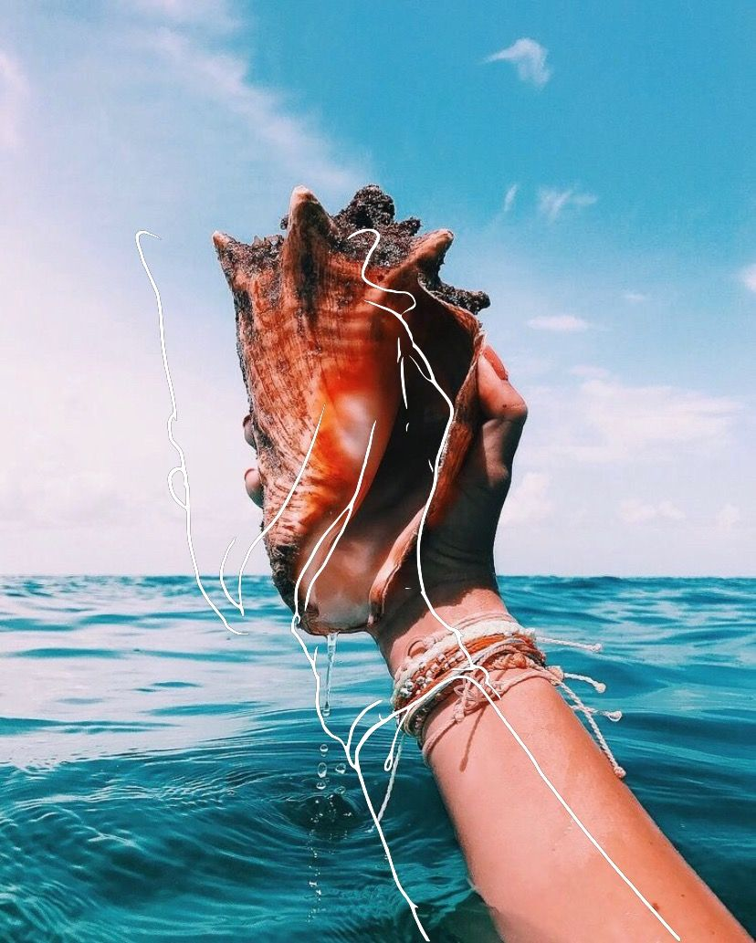 #california #husband #shell #summervibes