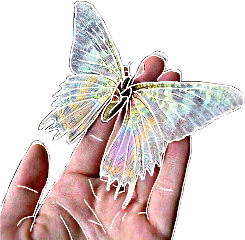 freetoedit hand holding butterfly sketcheffect