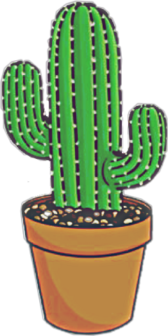 plant cactus asthetic stickers picsart freetoedit