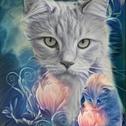 freetoedit cat cats beautiful cute irckittylove