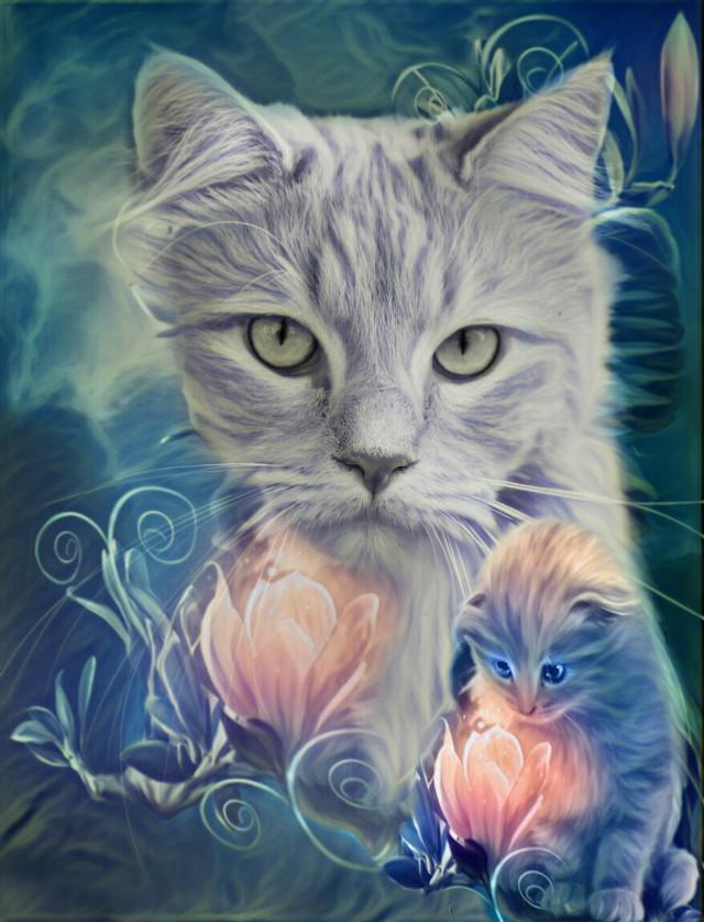 #freetoedit #cat #cats #beautiful #cute #magic @irethf5 #irckittylove