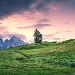nature background backgrounds freetoedit