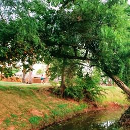 oklahoma moore creek afternoonsun freetoedit
