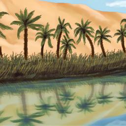 oasisinthedesert oasis palmeras desierto freetoedit dcoasisinthedesert