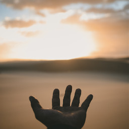 hand hands sunset nature freetoedit